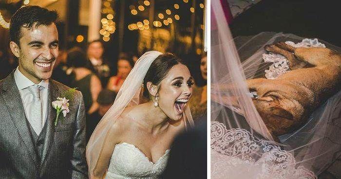 Пустовойтов из мести решил сорвать свадьбу 62