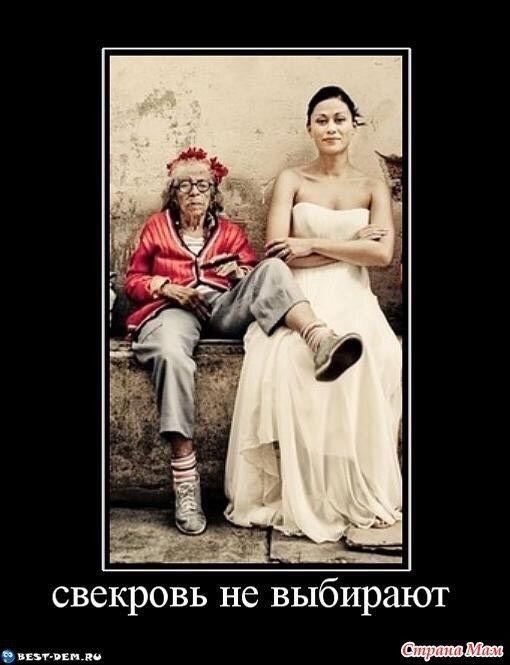 Вытанки, прикольные картинки невестка и свекровь