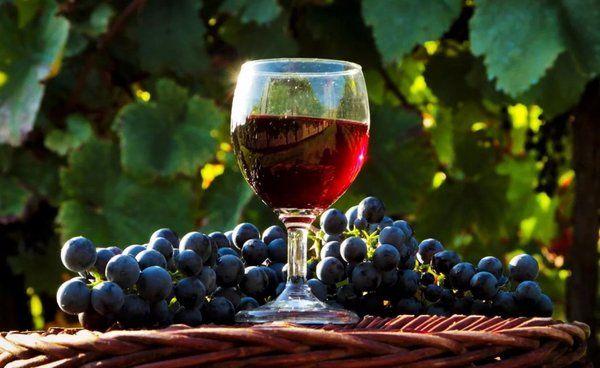 виноградное вино в домашних условиях приготовление
