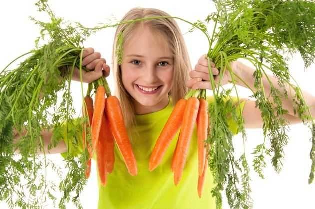 Как вырастить отборную морковь
