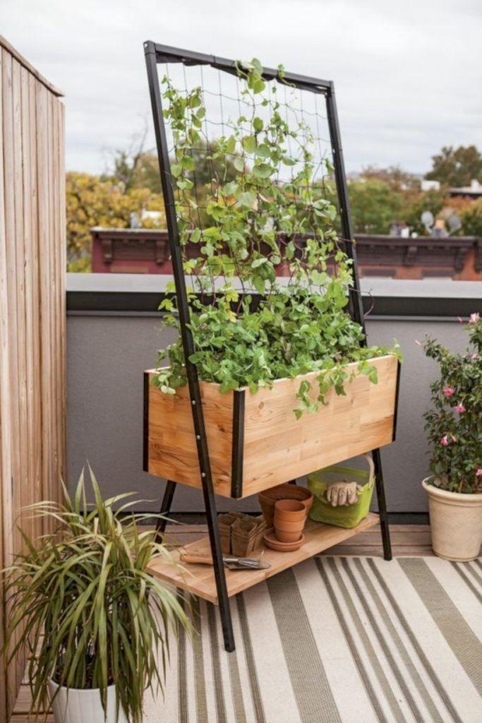 15 прекрасных высоких грядок, в которых удобно выращивать овощи и зелень