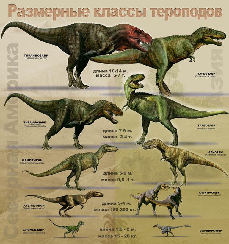 Хищные динозавры с картинками и названиями