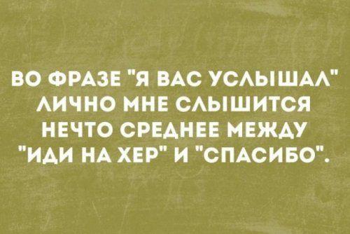 """Фраза """"Я тебя услышал(а)"""". 1521762415_prikol-41"""