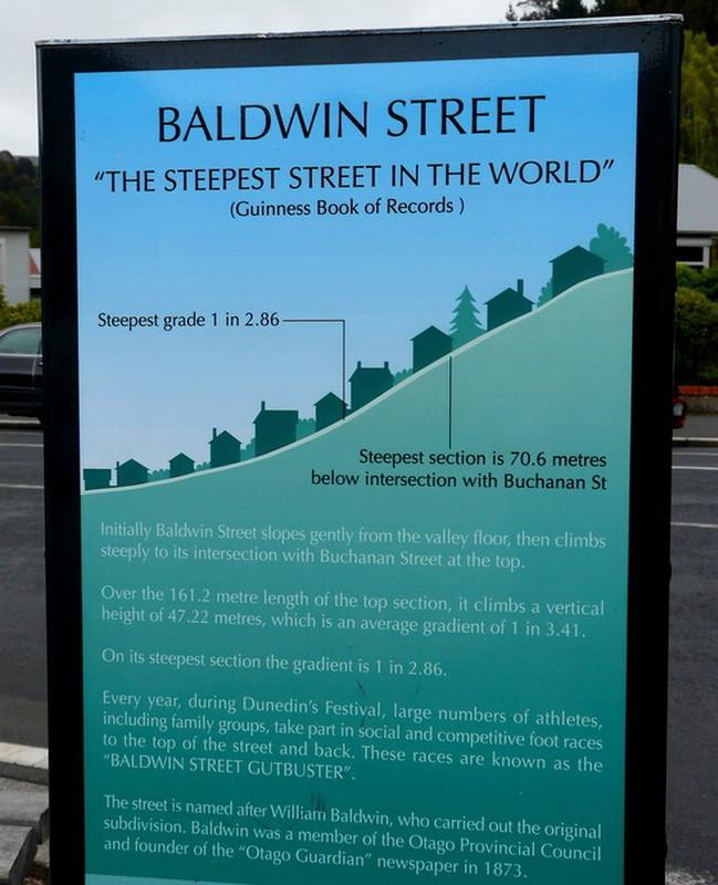 Улица Болдуин-стрит (Baldwin Street) в Новой Зеландии. | 800x649