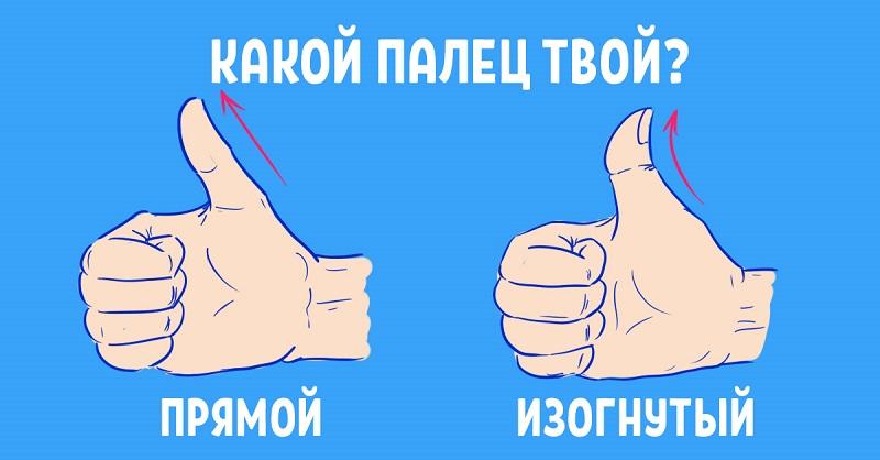 Тест на характер личности по углу изгиба большого пальца руки