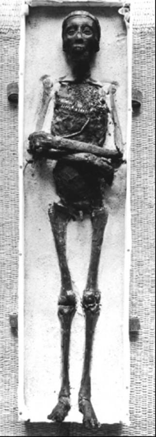 Анализ ДНК мумии Туттанхамона шокировал ученых