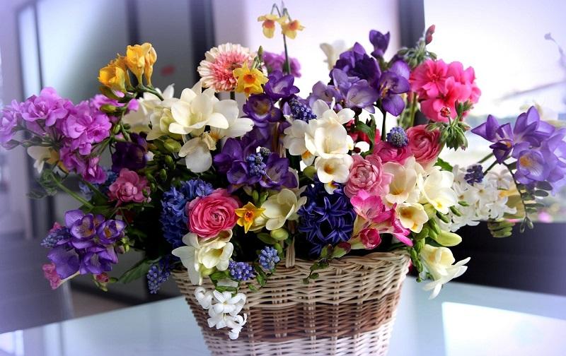 Счастье в букете! Почему принято дарить нечетное количество цветов и что  будет, если подарить четное.